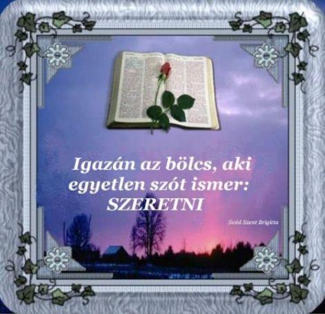 13296_475689478_big.jpg